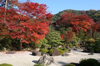 京都宇治・三室戸寺の紅葉状況(2010/11/21)
